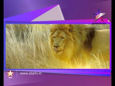 World Television Premier Chander Pahar on...