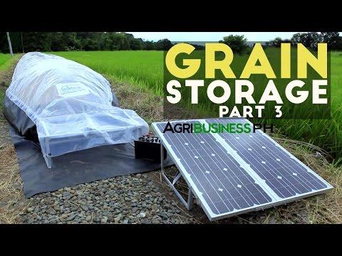 Solar bubble dryer : Grain storage solution Part 3 #Agribusiness