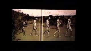 Steven Jay Gould: Darwin