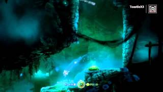 Ori and The Blind Forest - Moon Grotto Game Breaking Glitch [XB1]