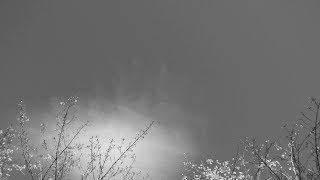 Clem Leek - Light Passage II (Grief)