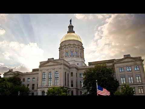 Georgia Senate Government Oversight Committee Meeting on Election Fraud