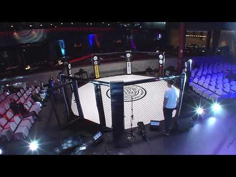Трансляция турнира KINGDOM PROFESSIONAL FIGHT-4