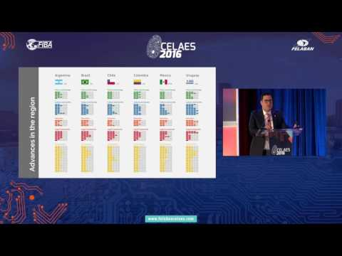 Cybersecurity – Are We Ready in Latin America and the Caribbean?  Celaes 2016