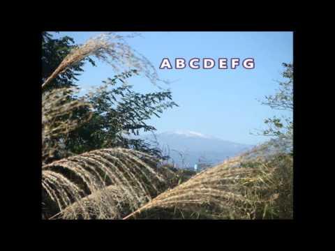 The Latin Alphabet Song
