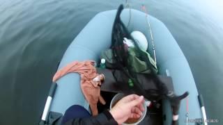 Ловля плотвы с лодки на реке Нева на фидер