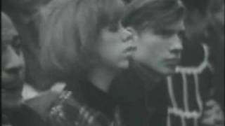 The Kinks -  Long Tall Shorty -  Live France -  1965