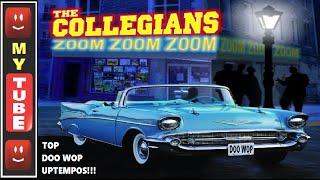 TOP 50s 60s DOOWOP ROCK! 🌸 Power Stereo Clips 🌸 MEDLEY!!