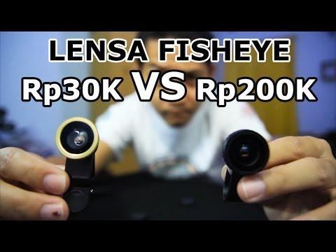 (Review) Lensa Fisheye Untuk Smartphone