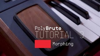Tutorials | PolyBrute - Episode 3: Morphing