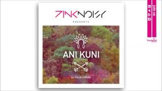 Pink Noisy - Ani Kuni (Dj Ravin Remix) - Official Audio Release