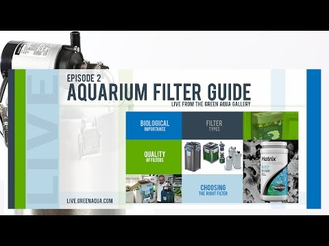 Episode 2: Aquarium Filter Guide
