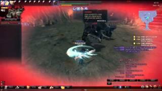 Vindictus(Mabinogi Heroes) Ep 9 Raid Controlled Blackhammer Dualspear lann solo