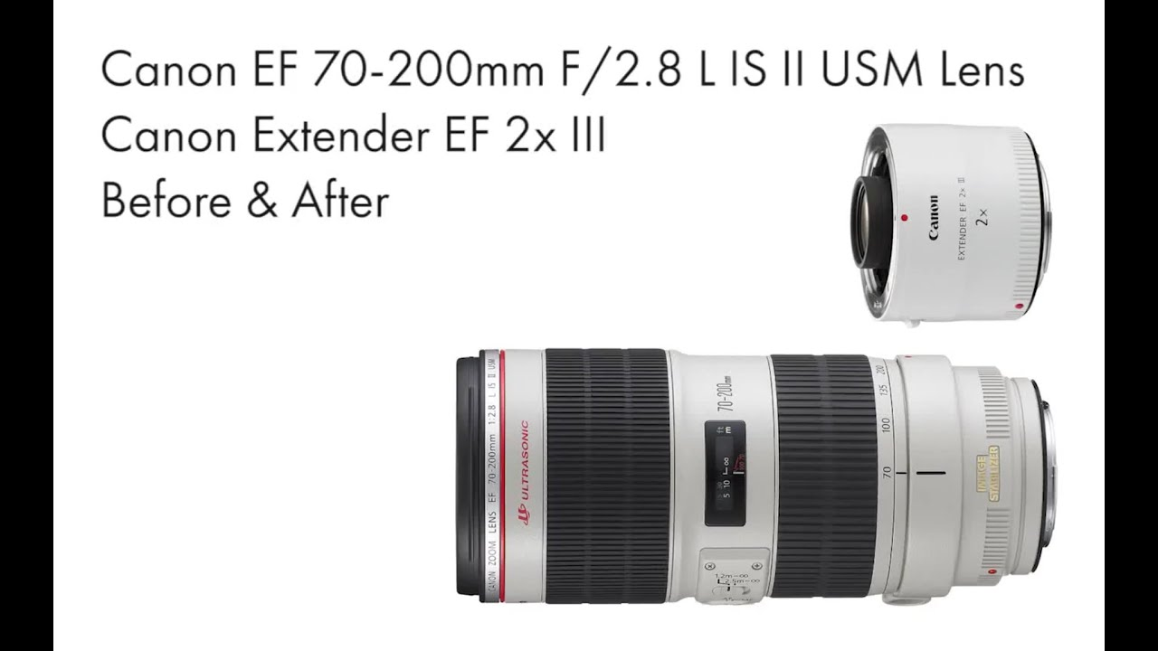 Canon ef extender 2x iii test on 70d with 70 200mm f 2 8 l for Schuhschrank 70 x 200