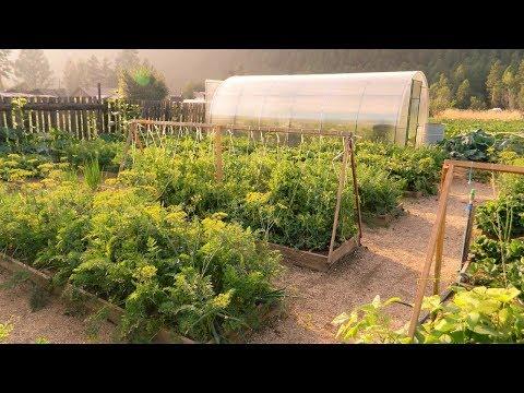 Супер огород мечты