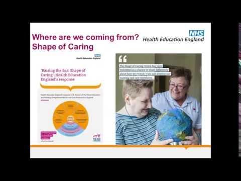 HEE Nursing Associate Test Bed Site Webinar - 13 July 2016