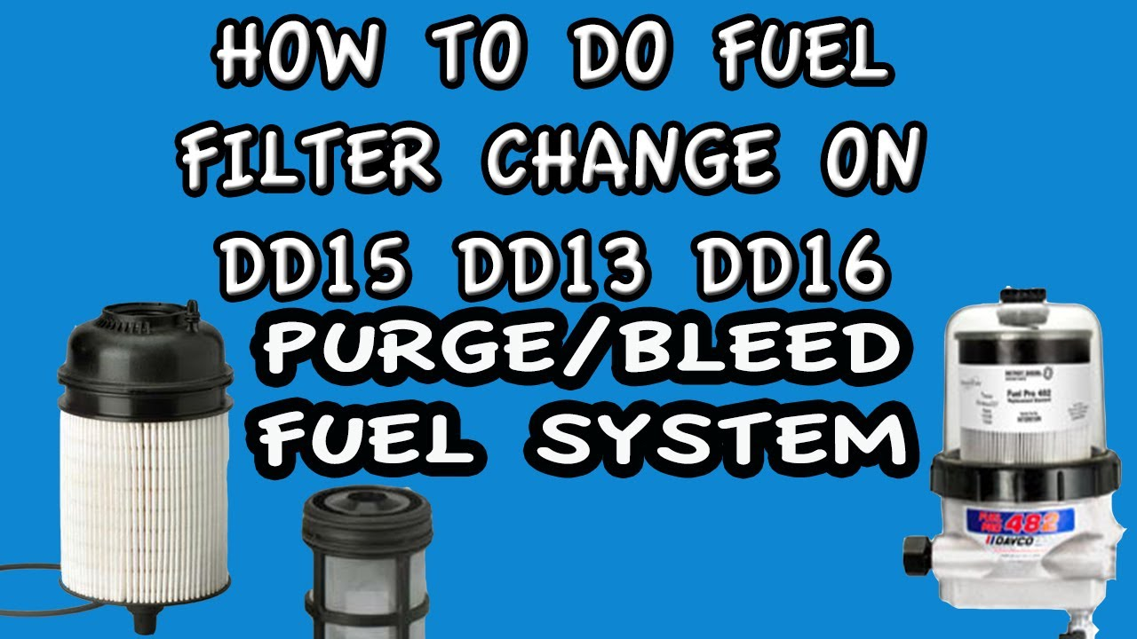Fuel Filter Bleed Purge Fuel System Freightliner Cascadia
