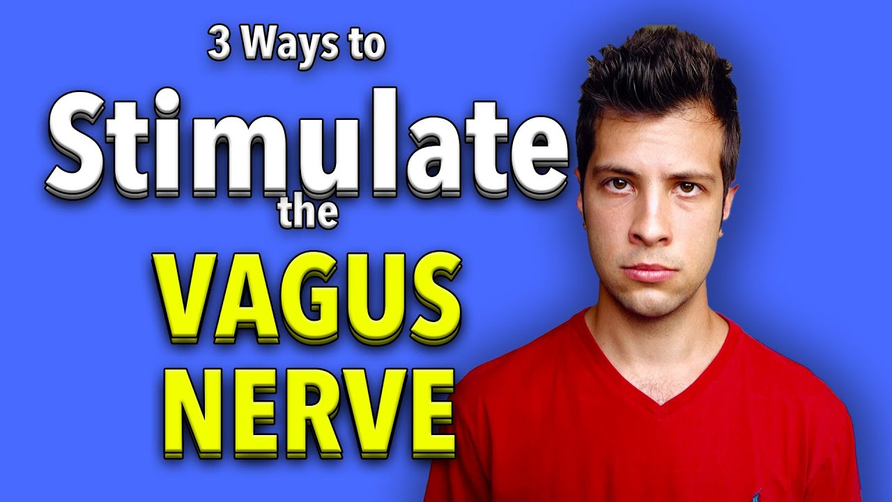 Vagus Nerve Stimulation 3 Easy Ways To Stimulate The Vagus Nerve