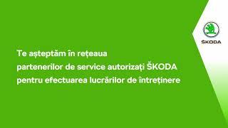 Oferta 4+: Calitate maximă la prețuri atractive la service-ul tău ŠKODA