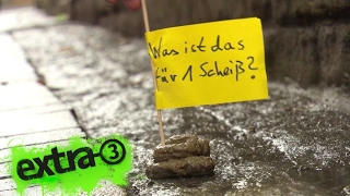 Realer Irrsinn: Hundekot-Fähnchen in Goslar