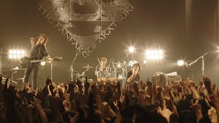 THE BACK HORN - コバルトブルー【Live Video】(2014.7.10@Zepp Tokyo)