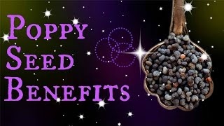 Poppy Seed Benefits | In ONE Minute!