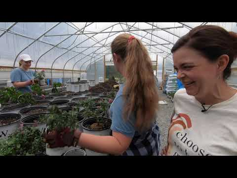 An October Day at the Nursery | Gardening with Creekside