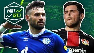 Fakt ist..! Schalke gewinnt Revierderby! FC Bayern patzt! Bundesliga Rückblick 31. Spieltag 18/19