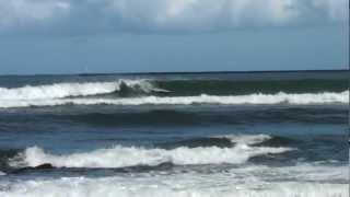 Hawaii Longest Left Hilo Bayfront surf December 2012