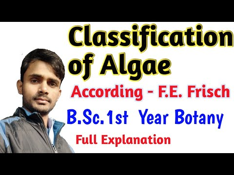 Classification Of Algae (According F. E. Frisch) B.Sc.1st Year Botany |by- Prahalad Sir