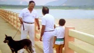 Kaikala Satyanarayana Jabardasth Comedy Scene | Comedy Kings
