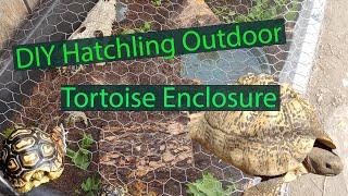 DIY Hatchling Leopard Enclosure (Outdoors)