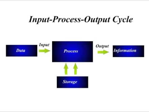 computer science lesson 6 input process output cycle youtube