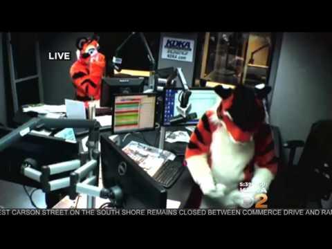 Cool tigers at KDKA Morning news