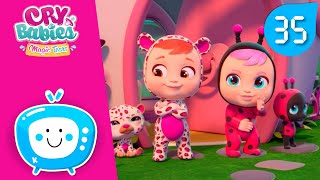 💕COLLECTION #6 💧CRY BABIES MAGIC TEARS 🌈 30 MINUTES! 😊CARTOONS for kids