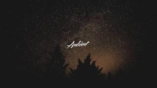 Andy Leech x 4lienetic - Nightfall