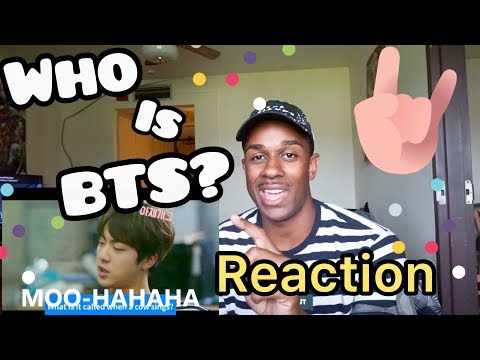 WHO IS BTS: THE SEVEN MEMBERS OF BANGTAN REACTION
