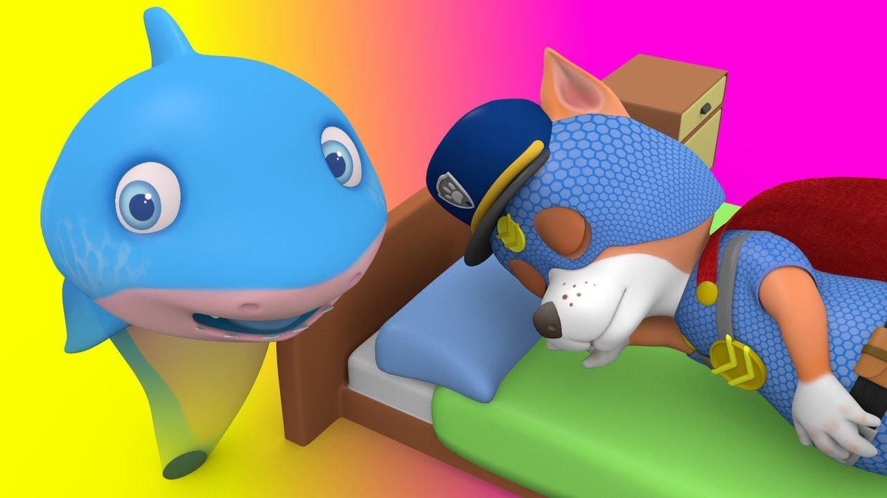 No No I don't want to go to bed with Paw Pat and Baby Shark - Songs for Children