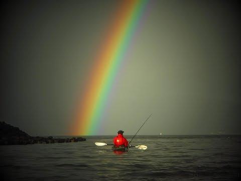 Clyde Estuary Fishing