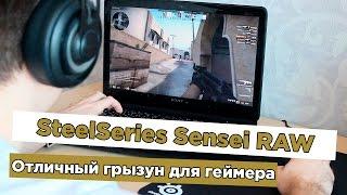 Обзор SteelSeries Sensei RAW