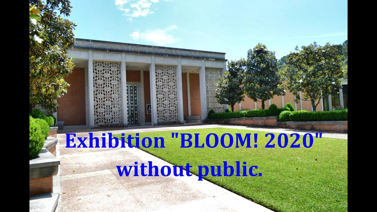 R.W. Norton Art Gallery's Annual Juried Exhibit BLOOM!2020