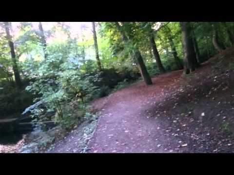 Gledhow Valley Woods: Virtual Tour #1 (Part 1 of 2)