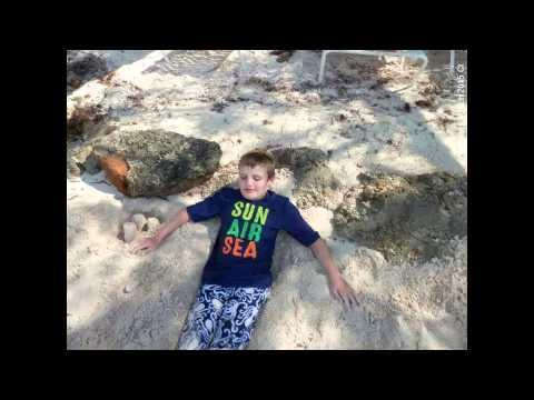 2015   Logan Photos Cayman Is