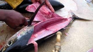 How To Fillet Fish - Yellowfin Tuna & Bigeye Tuna