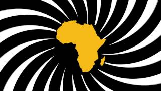 UN Human Rights - Fellowship Programme for People of African descent
