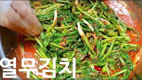 열무김치 황금레시피 - 시원하게 여름을 나는 열무김치 맛있게 담는법