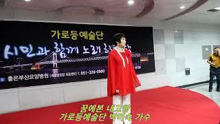 꿈에본 내고향 / 가로등예술단 박미숙 가수