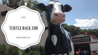 TURTLE BACK ZOO ESSEX COUNTY, NJ | VLOG