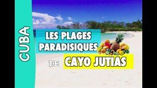 CAYO JUTIAS: DES PLAGES PARADISIAQUE ! 🏝 [CUBA] VLOG #1