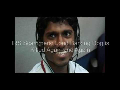 IRS Scammers    Loud Barking Dog is Killed Repeatedly